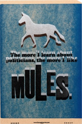 Amos Kennedy Jr., The Truth About Mules and Politicians, 2008.